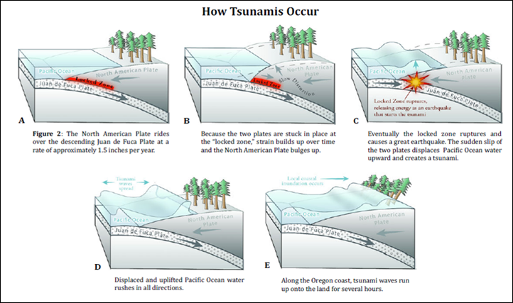 Tsunami - How they occur.